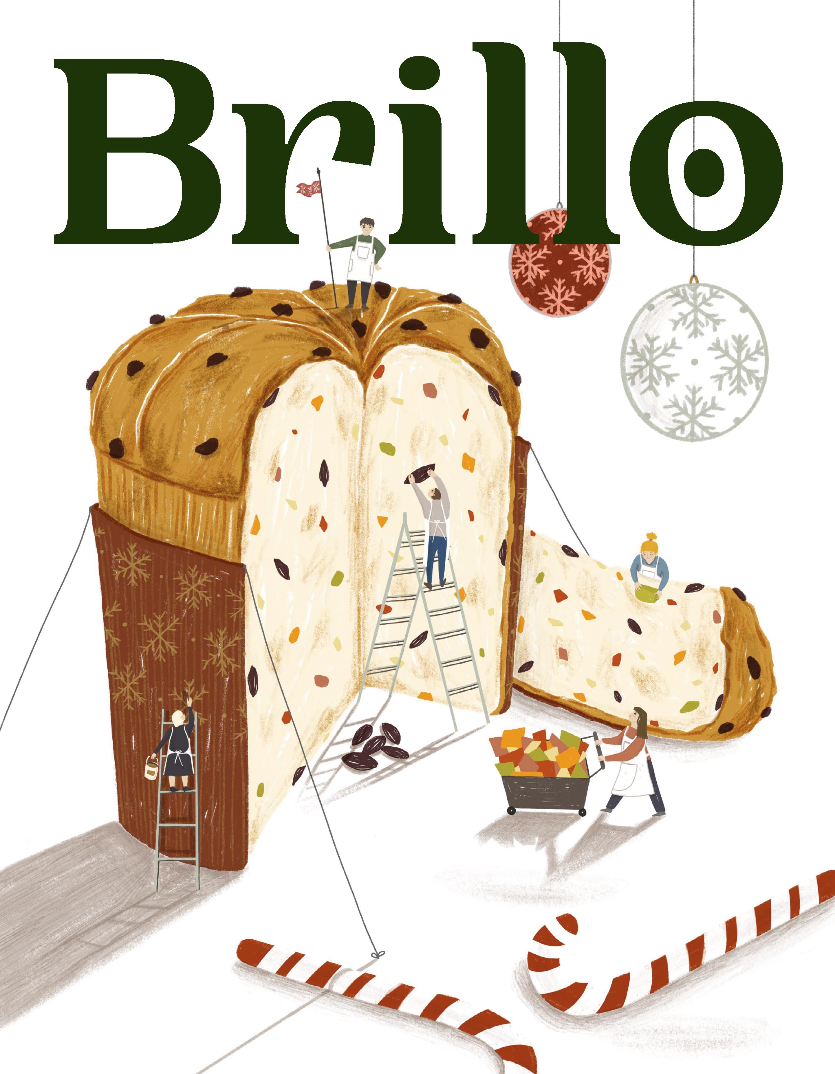 copertina Brillo Dicembre_ Caterina delli Carri VERDE-01